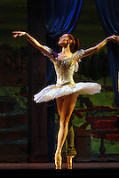 "College of Textiles student Lara O'Brien dances in front of background printed by the college during rehearsal for Carolina Ballet's production of ""Sleeping Beauty"" at Memorial Auitorium. PHOTO BY ROGER WINSTEAD"