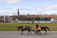 Goshen, New York - Standardbred horses train at Goshen Historic Track on Nov. 4, 2012.