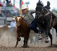 Steer Wrester, 2004 Cheyenne Frontier Days Rodeo, Cheyenne WY, July 2004