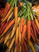A pile of freshly picked, organic carrots