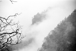China, Sichuan, 2007. Chinese paintings come to life in the moody weather at Emei Shan, a mountain range famous for its cloud forest atmosphere..
