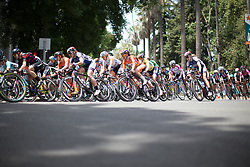 Most of the peloton stayed together until the end of the fourth, 70 km road race stage of the Amgen Tour of California - a stage race in California, United States on May 22, 2016 in Sacramento, CA.
