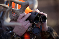 DEER HUNTER WEARING BLAZE ORANGE AND HOLDING HIS RATTLING ANTLERS WHILE GLASSING
