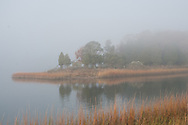 Marsh, Cedar Beach County Park, Southold, NY
