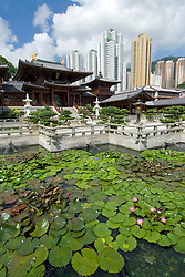 Lotus pond in front of temple at Chi Lin Nunnery in Hong Kong