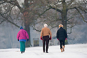 """London December 23rd People enjoy a walk in a frosty Richmond Park on December 23rd .The Met Office has issued several warnings of """"widespread icy roads"""" for most of England, Scotland and Northern Ireland. ....***Agreed Fee's Apply To All Image Use***.Marco Secchi /Xianpix. tel +44 (0) 771 7298571. e-mail ms@msecchi.com .www.marcosecchi.com"""
