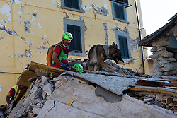 © London News Pictures. 24/08/2016. Amatrice, Italy. Rescue work underway in the town of Amatrice in central Italy where a 6.2-magnitude earthquake destroyed towns in the area. The death toll is currently at 247 with dozens of people still missing. Thousands of rescuers continue efforts to find survivors. Photo credit: Mario Sabatini/LNP