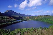 Menehune Pond, Kauai, Hawaii<br />