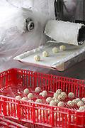 Manufacturing gnocchi