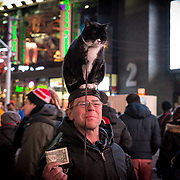 Cat on the hat at Times Square, NY.
