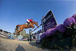 Bruynseels Niels (BEL) - Pommeau du Heup<br /> Final First Competition<br /> Furusiyya FEI Nations Cup™ Final - Barcelona 2014<br /> © Dirk Caremans