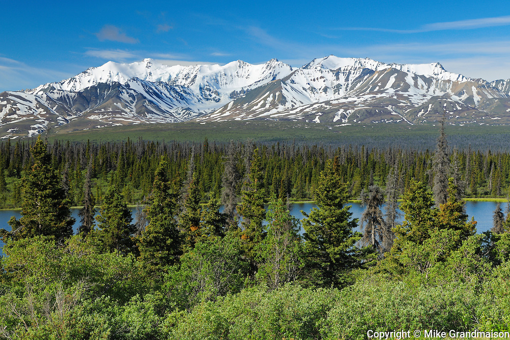 St. Elias Mountains and boreal forest<br /> Kluane National Park<br /> Yukon<br /> Canada