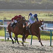 Royal Preserve and David Probert winning the 1.00 race