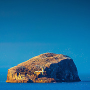 The volcanic plug, home to 150,000 gannets, a lighthouse and castle ruins, bathing in a late sun from Tantallon, North Berwick.