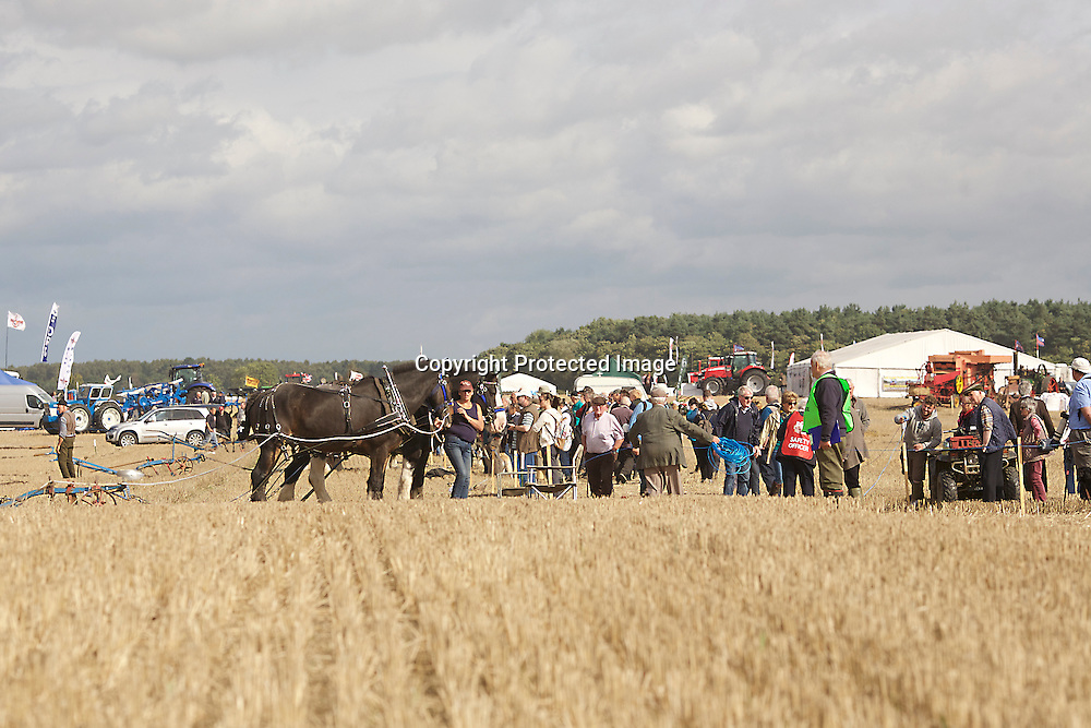 National Horse Ploughing Competition and Demonstrations 2016