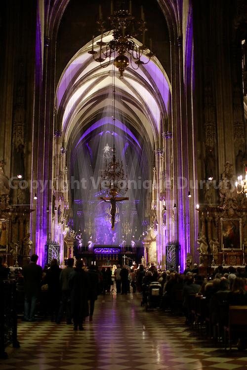 Stephansdom, Vienna Cathedral, Austria // Stephansdom, cathedrale St Etienne, Vienne, Austriche