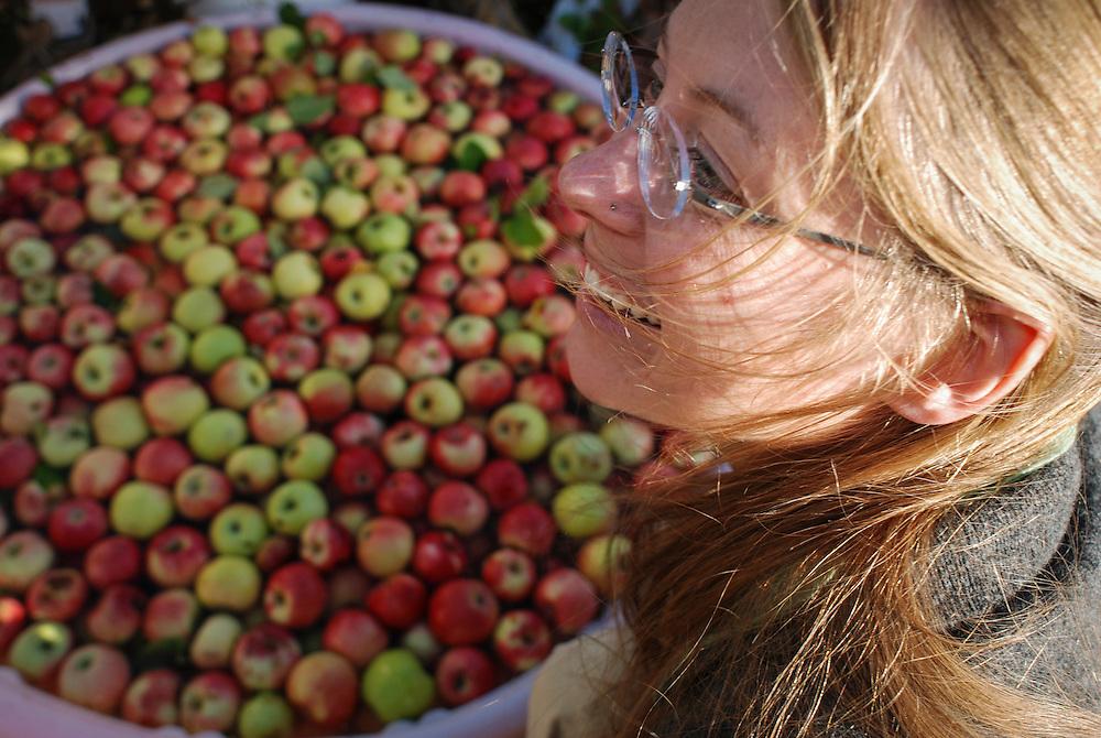 Rachel Shockley enjoys the autumn tradion of apple cidar pressing, Durango, CO.