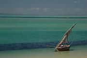 Africa, Mozambique, Bazaruto Archipelago. Vilankulo beach. Sailing dhow at low tide..©Demelza Cloke.