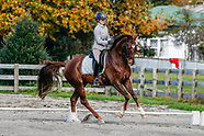 2018-05-20 Dressage Wairarapa Autumn Series (2nd day)