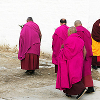 APRIL 5, 2012 : monks walk back to their homes after a morning prayer at Labrang monastery.