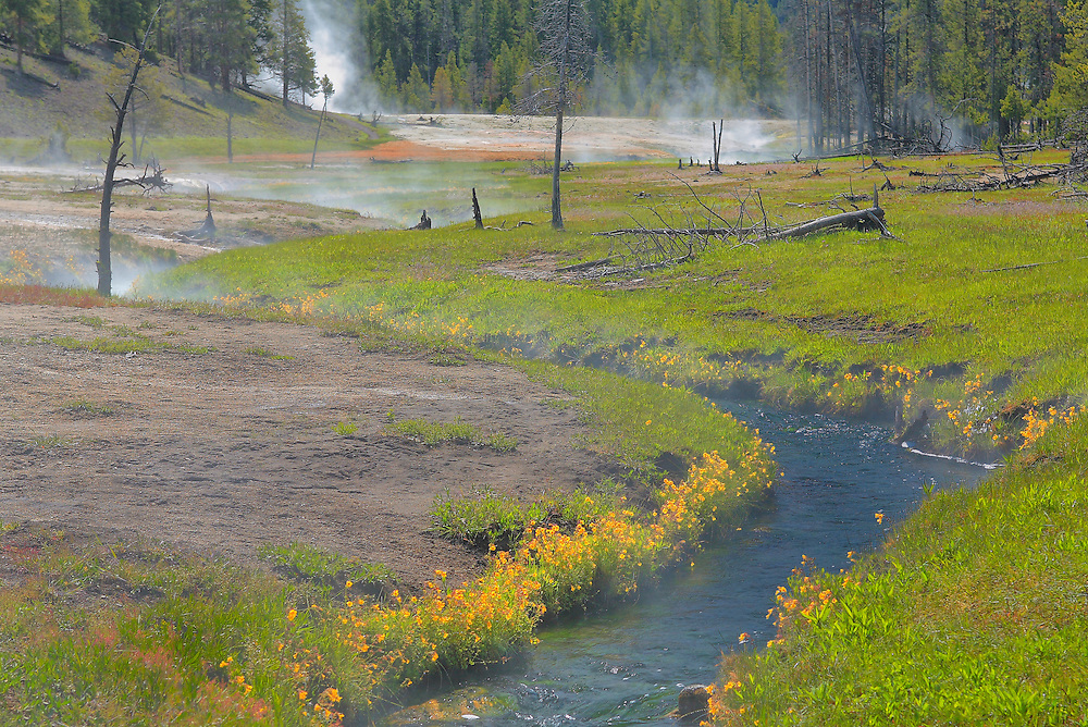 Geyser Pool Meadow And Stream - Yellowstone National Park