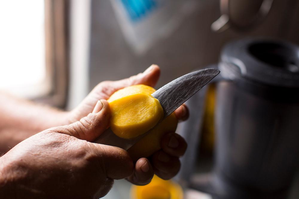 Indaiabira_MG, Brasil.<br /> <br /> ASA, Projeto Um Milhao de Cisternas, cisternas instaladas em residencias da comunidade de Caicara. Na foto, plantacao de laranjas.<br /> <br /> ASA, Project One Million cisterns, cistern installed on Caicara community residences. In this photo, orange plantation.<br /> <br /> Foto: LEO DRUMOND / NITRO