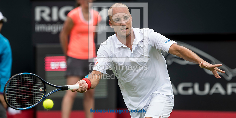 Steve Darcis (BEL) on day two of the Ricoh Open Tennis Tournament at the Autotron, Rosmalen, Netherlands.<br /> Picture by Joep Joseph Leenen/Focus Images Ltd +316 5261929<br /> 13/06/2017<br /> ***NETHERLANDS OUT***