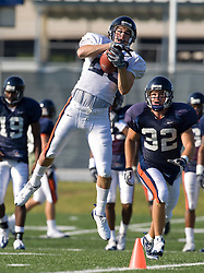 Virginia wide receiver Zach Mendez-Zfass (23) leaps for a catch.  The Virginia Cavaliers football team during an open practice on August 16, 2008 at the University of Virginia's football turf field in Charlottesville, VA.