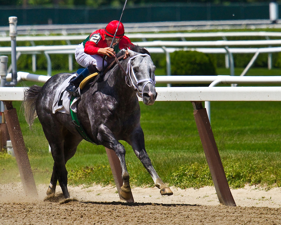 """Fifth of Seven. """"Hot Minute"""" was the pacesetter in this race, and blew a clear lead to finish second."""