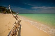 Paradise Island Driftwood Indonesia Sangalaki Island