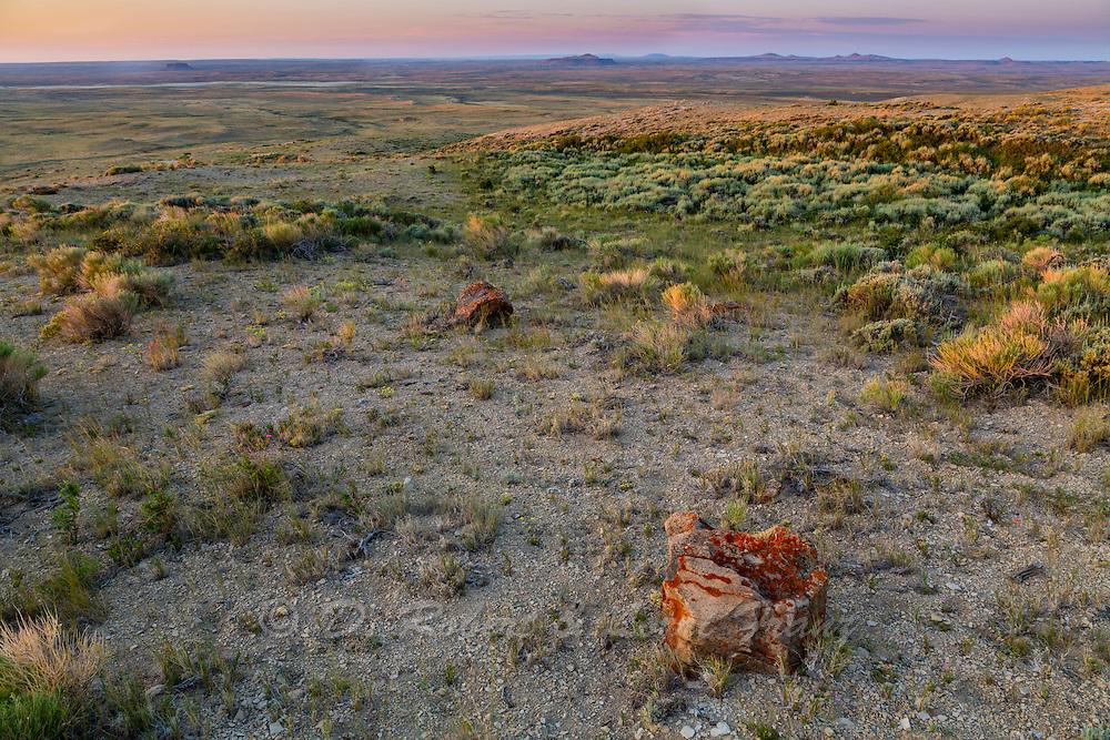 Sagebrush steppe in the Red Desert of Wyomong