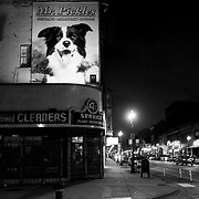 Night time street shot in Wicker Park neighborhood, Chicago, Illinois, USA.