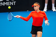 SYDNEY, NSW - JANUARY 07: Ajla Tomljanovic (AUS) hits a forehand at The Sydney International Tennis on January 07, 2018, at Sydney Olympic Park Tennis Centre in Homebush, Australia. (Photo by Speed Media/Icon Sportswire)