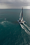 """02AUG09 The 60' Trimaran """"Banque Populaire"""", skippered by Frenchman Pascal Bidegorry smashes the transatlantic multihull record from New York to Lizard Point off the Cornish coast, UK, crossing the line at 14:13:30 GMT (15:13:30 BST/local), setting a new world record of.3days, 15hours, 25mins and 48 seconds. They had previously set a new 24hour run of 907miles."""