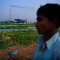 Farmers along the Yumuna river use the polluted waters to irrigate their crops.