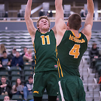 3rd year setter Michael Corrigan (11) of the Regina Cougars during the home game on January 6 at Centre for Kinesiology, Health and Sport. Credit: Arthur Ward/Arthur Images