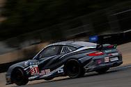 #31 Competition Motorsports Porsche 911 GT3 Cup: Michael Avenatti, Bob Faieta, Cort Wagner