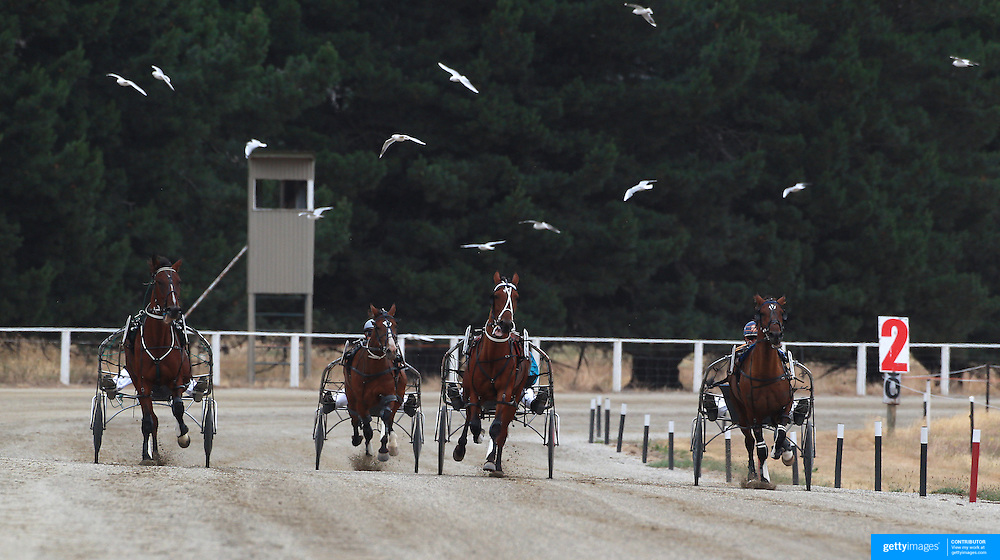 Competitors in action during the Roxburgh Trotting Club Summer Festival Races, Roxburgh, Otago, New Zealand. 5th January 2012