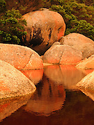"Orange lichen and rocks reflect in the tannin-stained water of Tidal River at Wilson's Promontory National Park in the warm glow of sunset light in the Gippsland region of Victoria, Australia. Natural tannins leached from decomposing vegetation turn the water brown. Drive two hours from Melbourne to reach Wilson's Promontory, or ""the Prom,"" which offers natural estuaries, cool fern gullies, magnificent and secluded beaches, striking rock formations, and abundant wildlife."