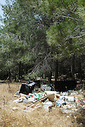 Pile of waste left in nature defacing the landscape and polluting the environment in a pine tree forest
