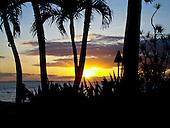 Hawaii Scenary
