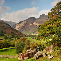 Tuning Leaves, Great Langdale, Lake District, Cumbria