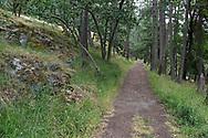 The trail to Daffodil Point through the Garry Oak trees (Quercus garryana) at Burgoyne Bay Provincial Park on Salt Spring Island, British Columbia, Canada
