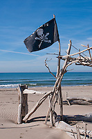Pirate flag and driftwood on the beach in the Camargue, France n a calm, sunny day.