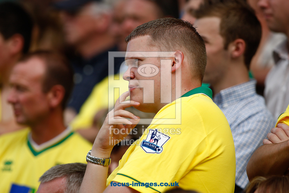 Picture by Andrew Tobin/Focus Images Ltd +44 7710 761829.18/08/2012. Norwich spectators look on during the Barclays Premier League match at Craven Cottage, London.