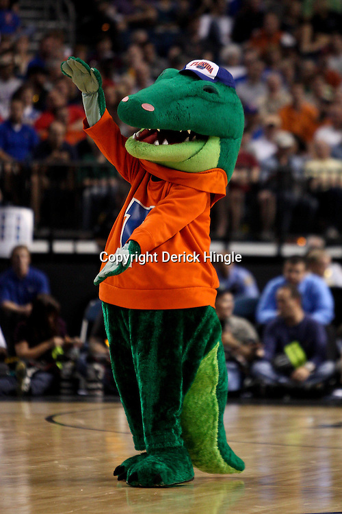 Mar 19, 2011; Tampa, FL, USA; The Florida Gators mascot performs during first half of the third round of the 2011 NCAA men's basketball tournament against the UCLA Bruins at the St. Pete Times Forum.  Mandatory Credit: Derick E. Hingle
