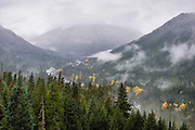 Rain and fog had settled into the Cascades as I walked to overlook the White River.  Fresh snow had fallen at higher altitudes and the yellow maples dotted the valley.  I stood for quite a while to enjoy the serene setting.  Little did I know that Mt Rainier towered over this scene through the distant fog.