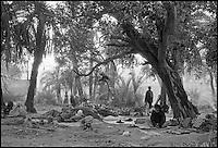 Pakistan - La fete des soufis - Province du Sind et du Balouchistan - Pelerinage soufi de Lahoot -  Quelques milliers de pelerins se rendent à pied sur les tombes des Saint Soufis - Ici 10 à 15 jours de marche à travers la chaine desertique du Khartar au Balouchistan. // Pakistan. Sind province. Soufi pilgrims at camp.