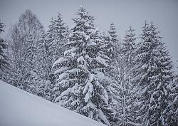07.01.2019, Saalbach Hinterglemm, AUT, heftige Schneefaelle in weiten Teilen Oesterreichs, im Bild Winterlandschaft // Austria is expected to receive heavy snowfalls in the next days. Weather forecasts warn that the snowstorm could cause roadblocks and increased avalanche danger in many parts of the affected region Saalbach Hinterglemm, Austria on 2019/01/07. EXPA Pictures © 2019, PhotoCredit: EXPA/ Stefanie Oberhauser