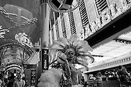2012-Fremont Street- Las Vegas, Nevada.